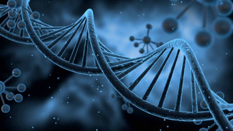 HPV και Μοριακή Διάγνωση – HPV mRNA Test - GynoCare Center